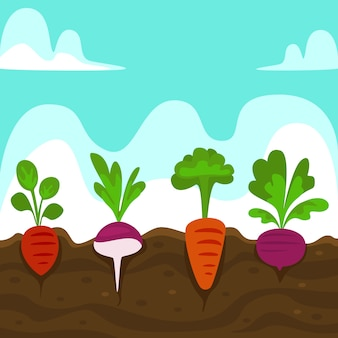 Flat hand drawn cartoon root vegetables soil illustration