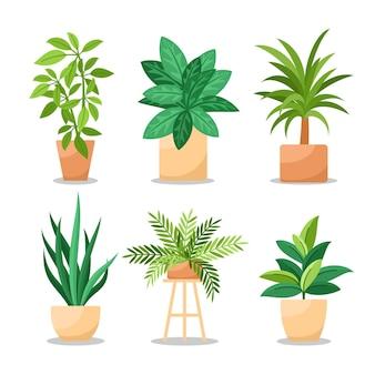 フラット観葉植物コレクション