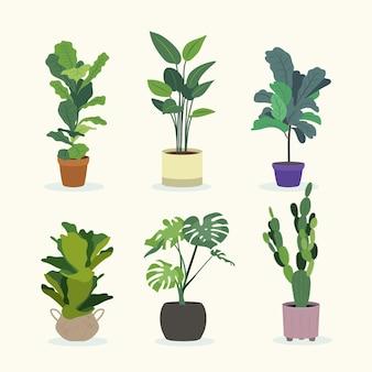 Collezione illustrata di piante d'appartamento piatte