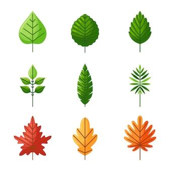 Illustrazione piatta di foglie
