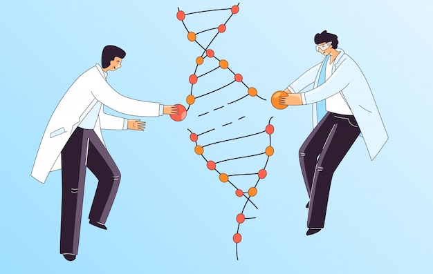 Flat illustration of two scientist man, characters doing genetic dna gene treatment. man repairing dna spiral for crispr therapy, concept.
