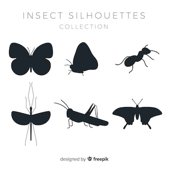Flat insect silhouettes collection