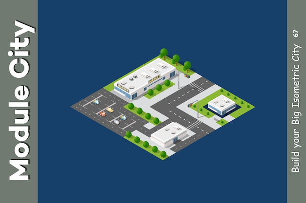 Flat isometric map