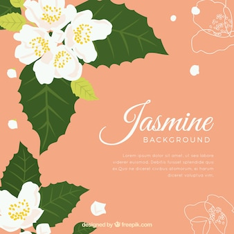 Flat jasmine background with cute style