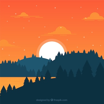 Flat landscape of forest at sunset