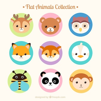 Flat lovely animal avatar collection