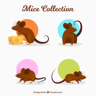 Сбор плоских мышей с разными позами