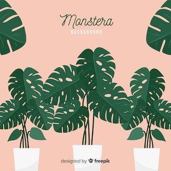 Flat monstera leaves in flowerpots background