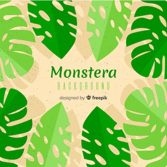 Flat monstera leaves frame background