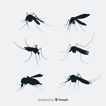 Flat mosquito silhouette set