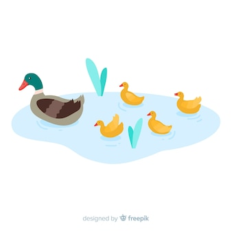 Flat mother duck and ducklings in puddle