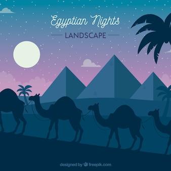 이집트 피라미드와 낙타의 캐러밴 평면 밤 풍경