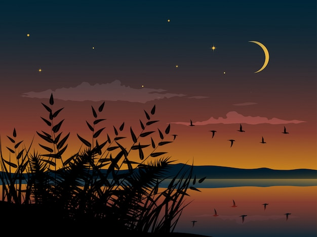 Flat night nature landscape with flying birds