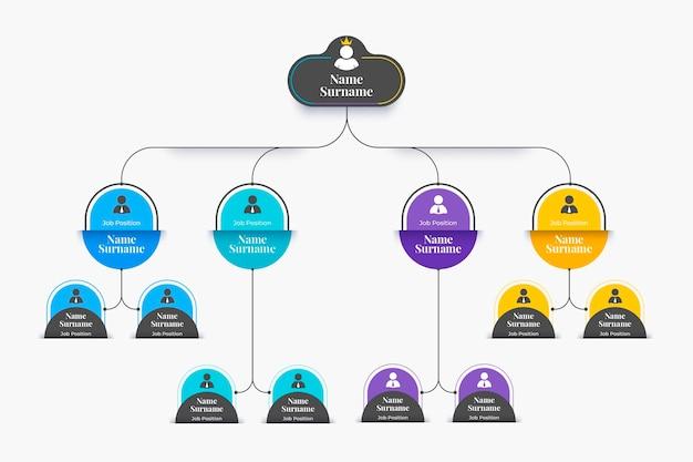 Infografica organigramma piatto