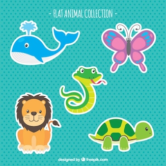 Flat pack of colorful animals