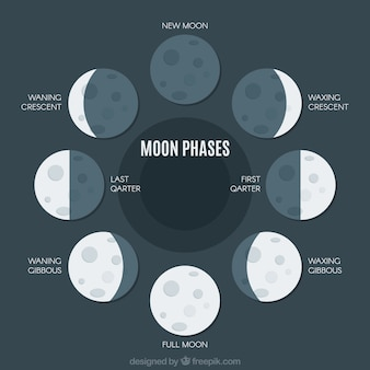 Flat pack of great moon phases
