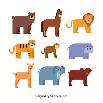 Flat pack of nine different animals