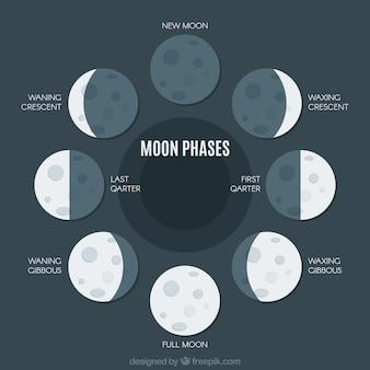 Плоский пакет больших фаз луны