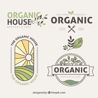 Flat pack organic food stickers with colored details