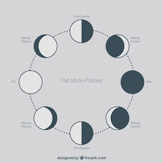 Flat phases of the moon