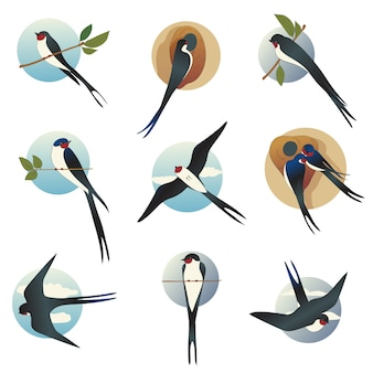 Flat   set of martlets or barn swallows with circle shape . wild bird with long forked tail