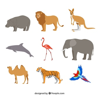Flat set of wild animals