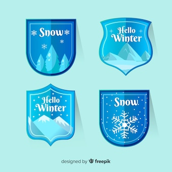 Flat ski and snow badge collection