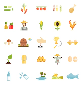 Flat style vector farm organic food icon isolated