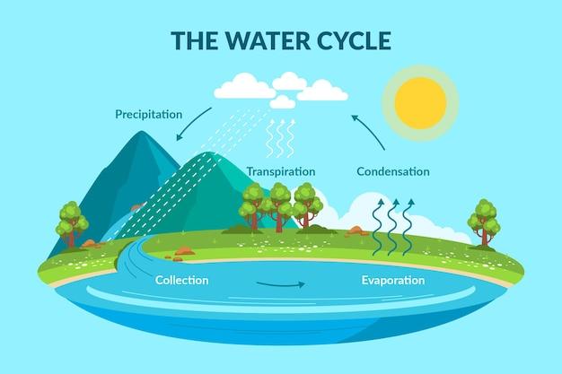 Ciclo dell'acqua in stile piatto