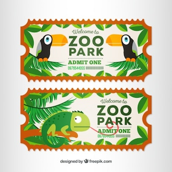 Flat tickets of toucans and chameleon
