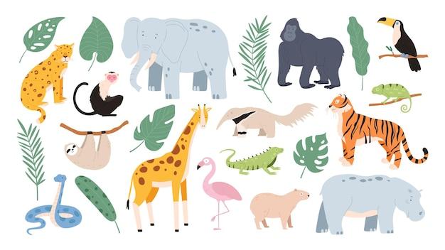 아프리카 사바나와 정글 숲에서 온 평평한 열대 동물. 만화 호랑이, 원숭이, 플라밍고, 코끼리, 나무늘보. 사파리 동물 벡터 세트