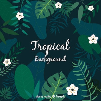 Flat tropical background