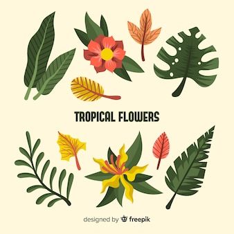 Flat tropical flowers and leaves