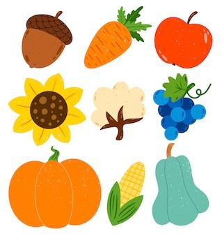 フラットベクトル秋収穫イラストセット。カボチャ、ズッキーニ、綿、ドングリ、ニンジン、リンゴ、ヒマワリ、ブドウ、白で隔離されるトウモロコシ