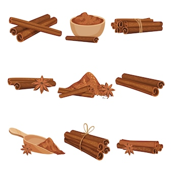 Flat vector set of rolled cinnamon sticks and powder.