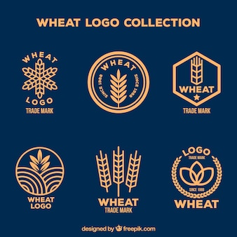 Flat wheat logo collection
