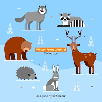 Flat winter forest animals collection