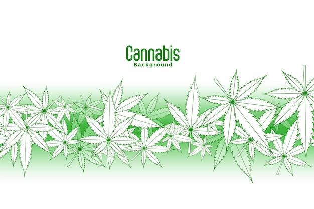 흰색 배경에 떠 있는 마리화나 잎