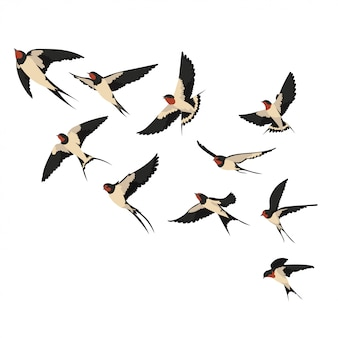 A flock of flying swallows. illustration of cartoon swallows for children.