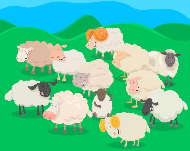 Flock of sheep cartoon illustration