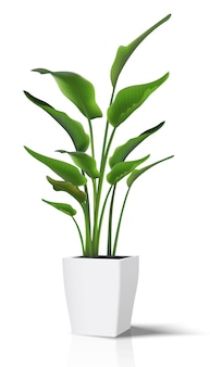 床の家の緑の植物。白い鍋に白いイラストアイコンを。