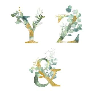 꽃 알파벳, 문자 y, z 및 수채화 녹색 및 금박.