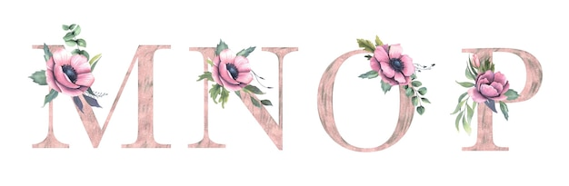 花のアルファベットm、n、o、p