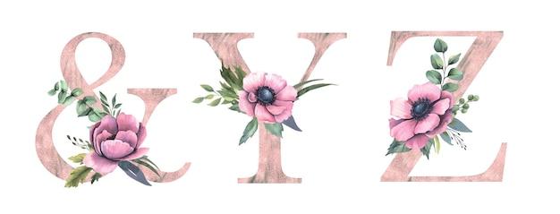 花のアルファベットy、z、&。