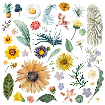 花の背景パターン