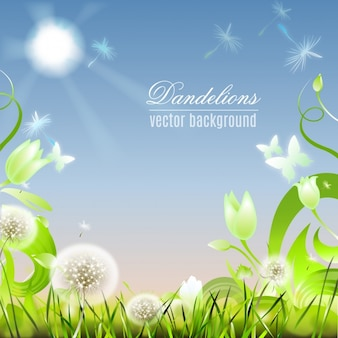 Floral background with dandelions