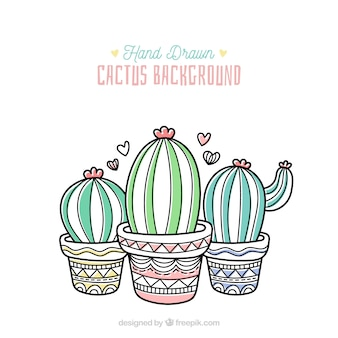 Floral background with hand drawn cactus