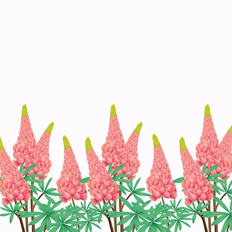Floral background with lupine flower