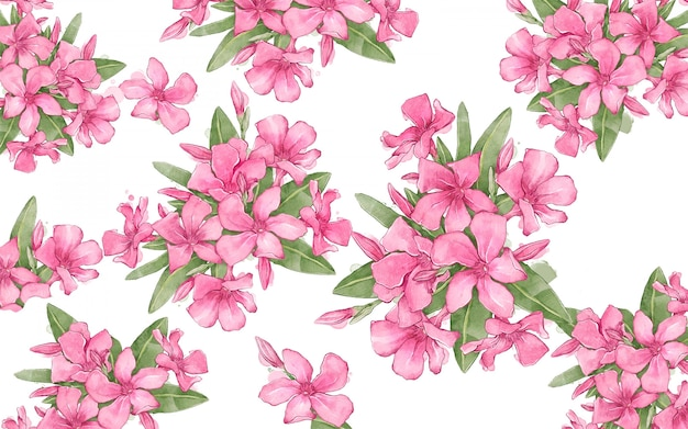 Floral background with oleanders composition