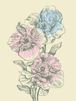 양 귀 비와 꽃 배경